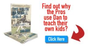 youth baseball bible book logo